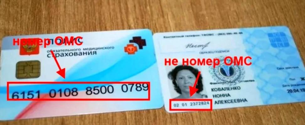 Как узнать номер медицинского полиса ОМС через интернет по фамилии